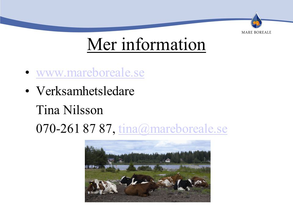 Mer information www.mareboreale.se Verksamhetsledare Tina Nilsson