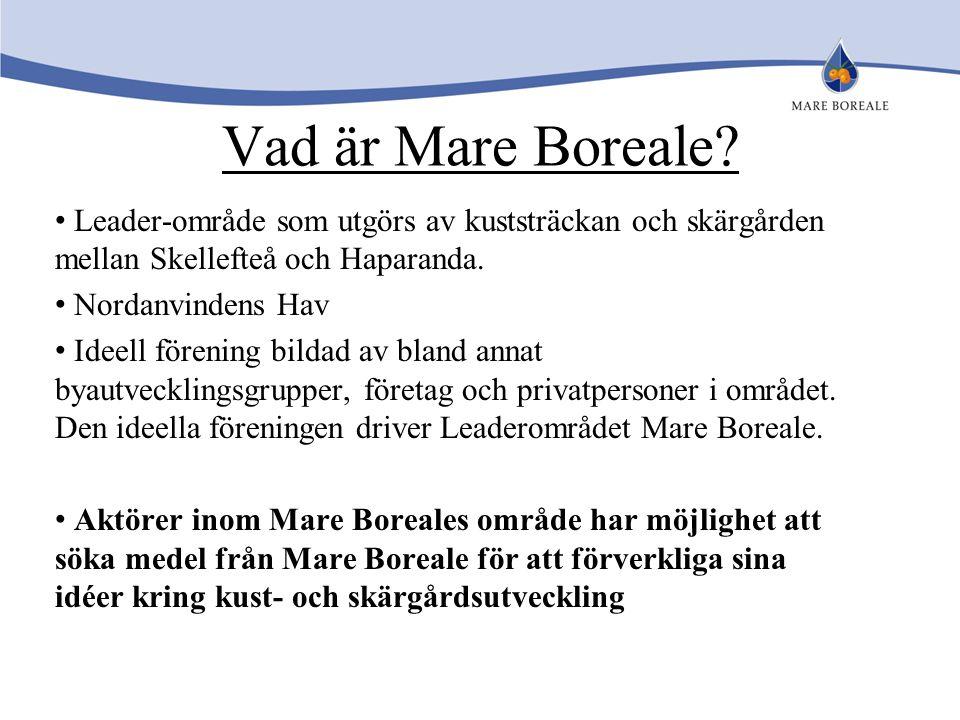 Vad är Mare Boreale Leader-område som utgörs av kuststräckan och skärgården mellan Skellefteå och Haparanda.