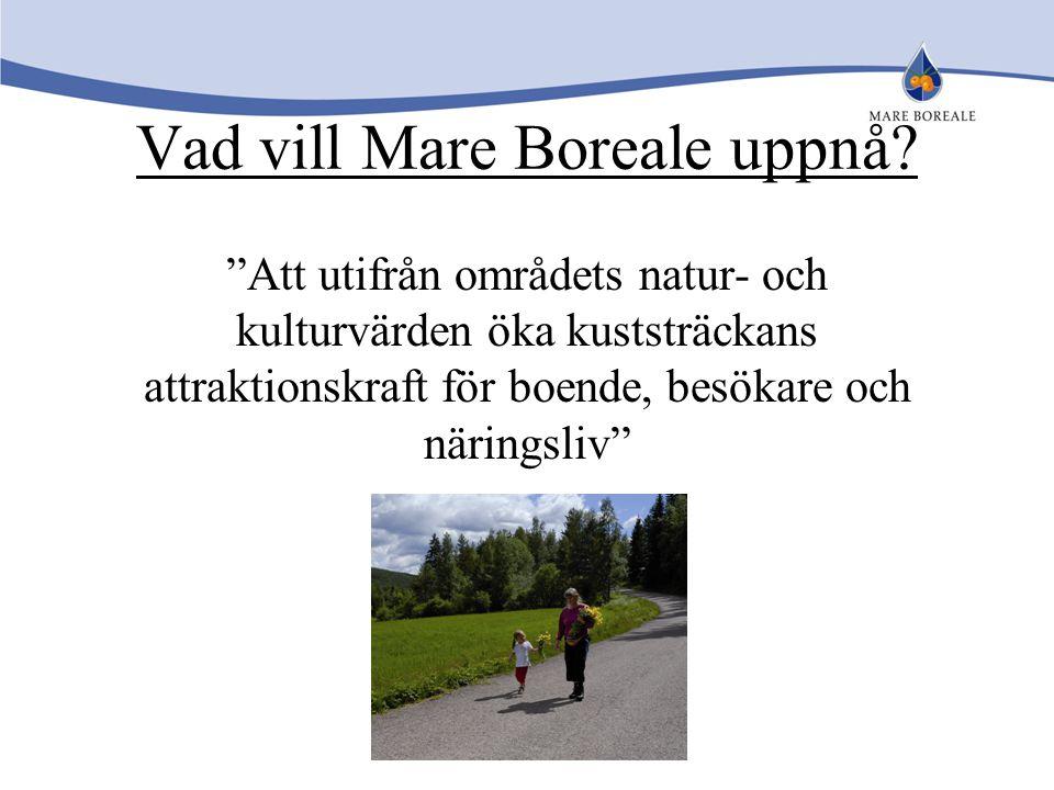 Vad vill Mare Boreale uppnå