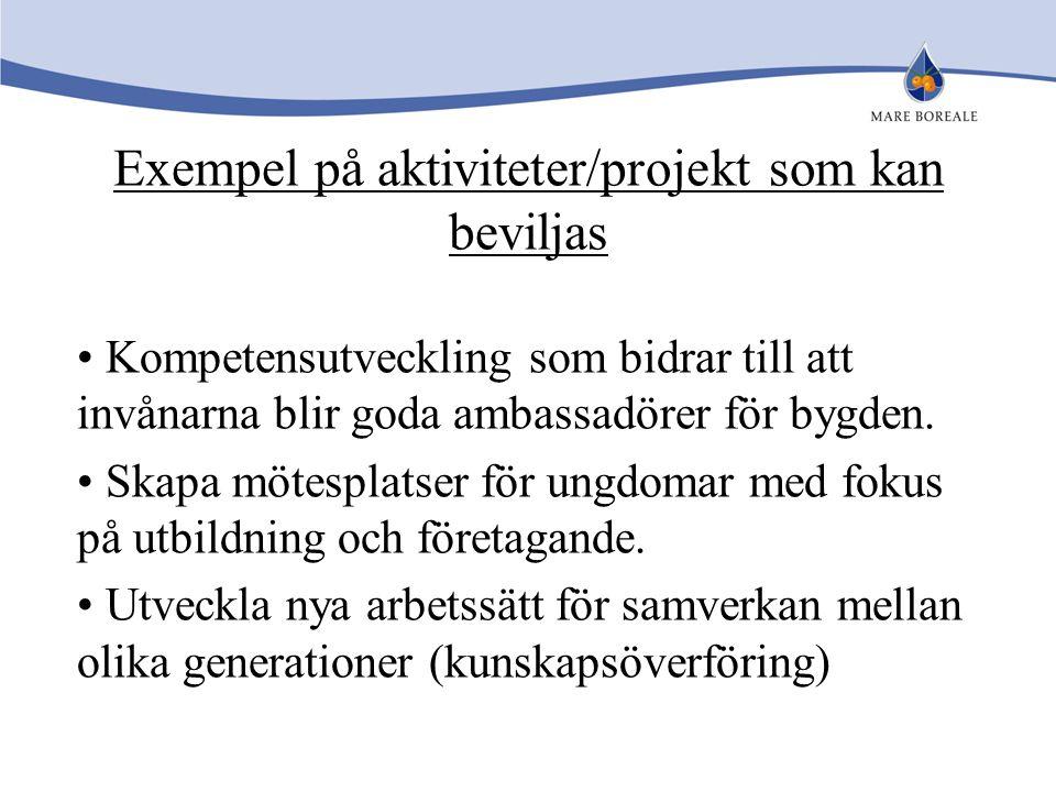Exempel på aktiviteter/projekt som kan beviljas