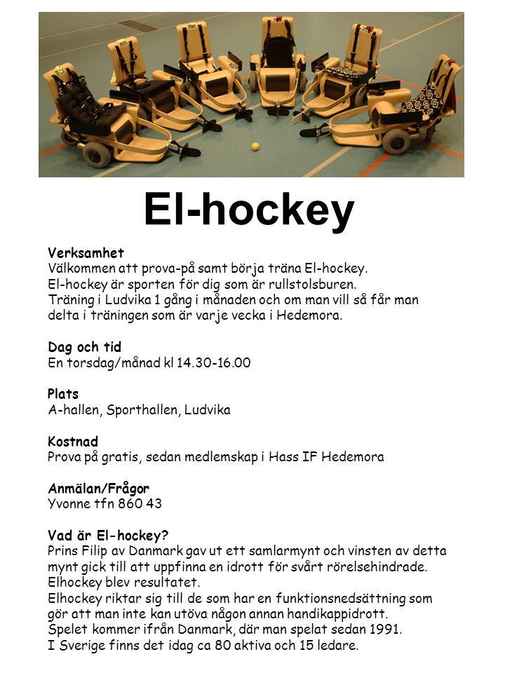 El-hockey Verksamhet. Välkommen att prova-på samt börja träna El-hockey. El-hockey är sporten för dig som är rullstolsburen.