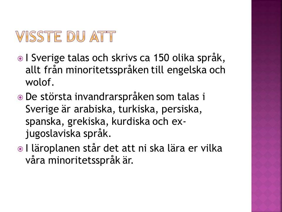 Visste du att I Sverige talas och skrivs ca 150 olika språk, allt från minoritetsspråken till engelska och wolof.