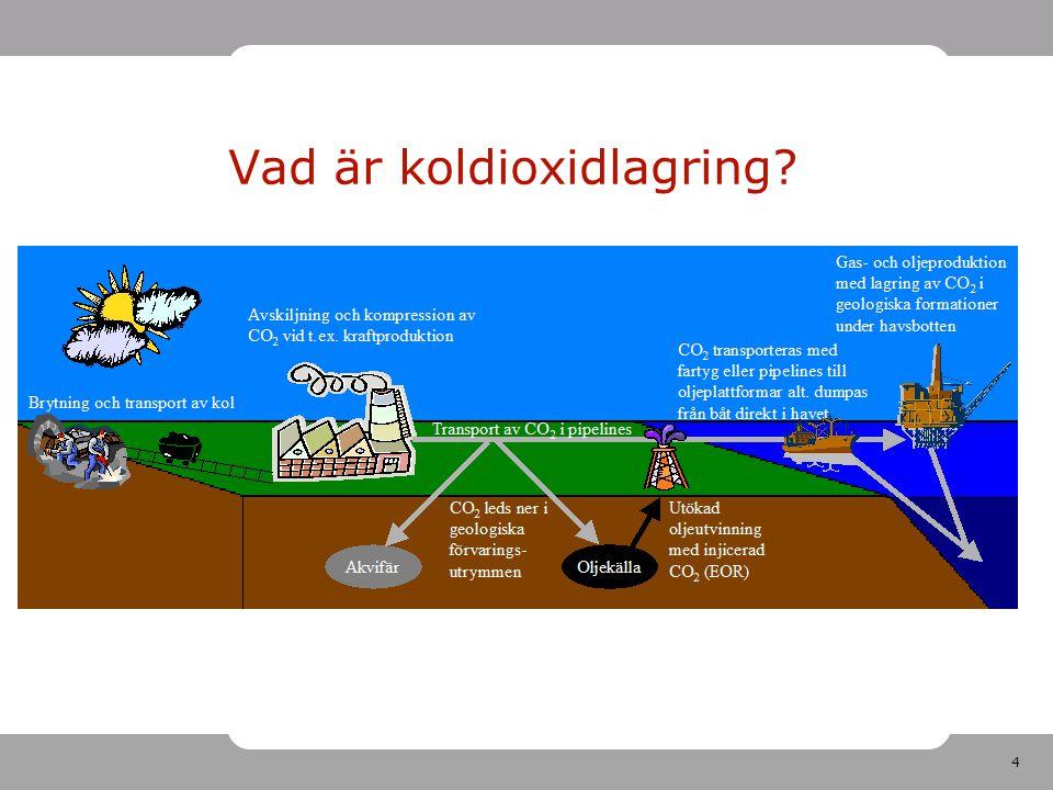 Vad är koldioxidlagring