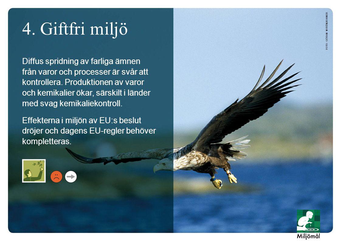4. Giftfri miljö foto: Göran Nyrén/JOHNER.