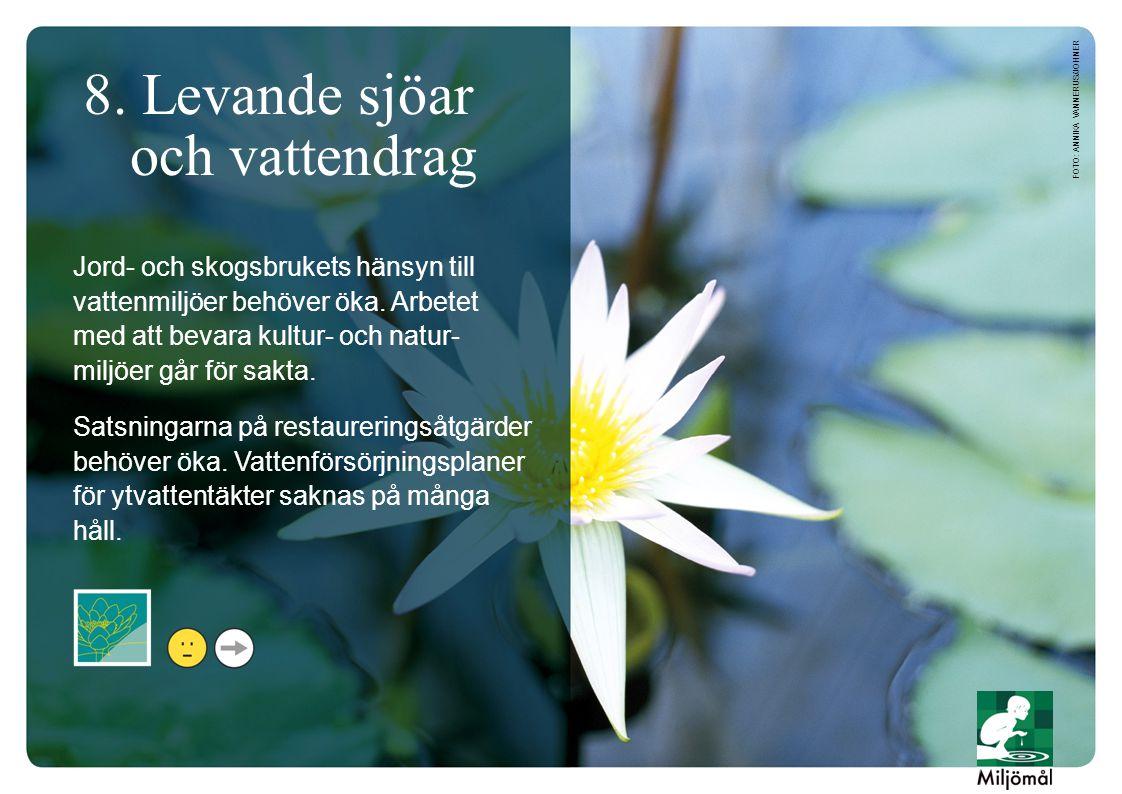 8. Levande sjöar och vattendrag