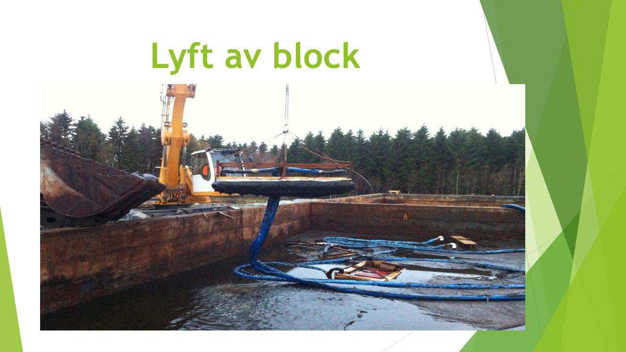 Lyft av block Här lyfter vi frysblocken ur en dam där vi fryser kvicksilver ihop med sediment