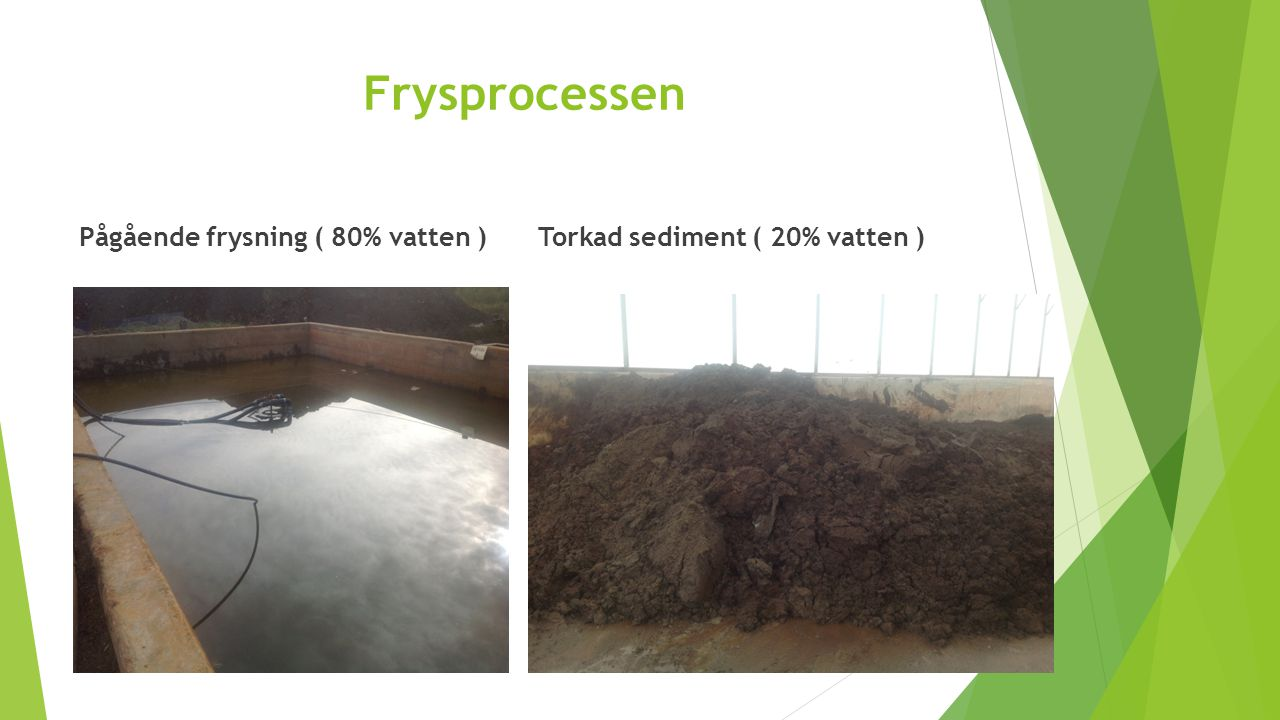 Frysprocessen Pågående frysning ( 80% vatten )
