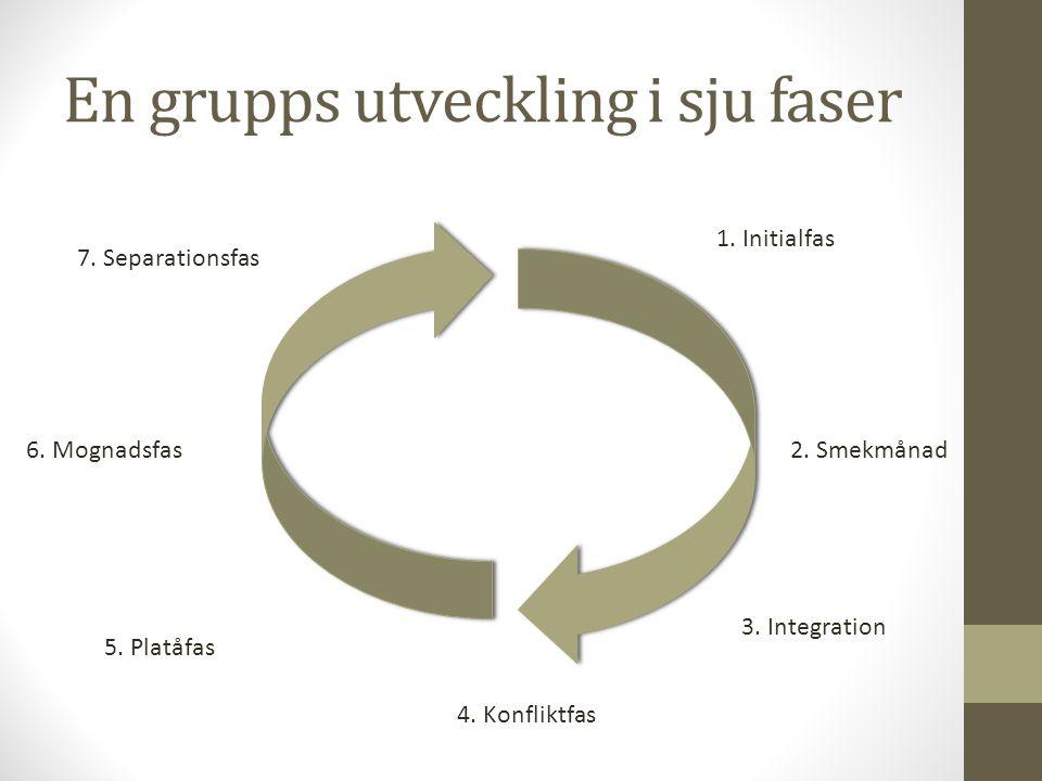 En grupps utveckling i sju faser