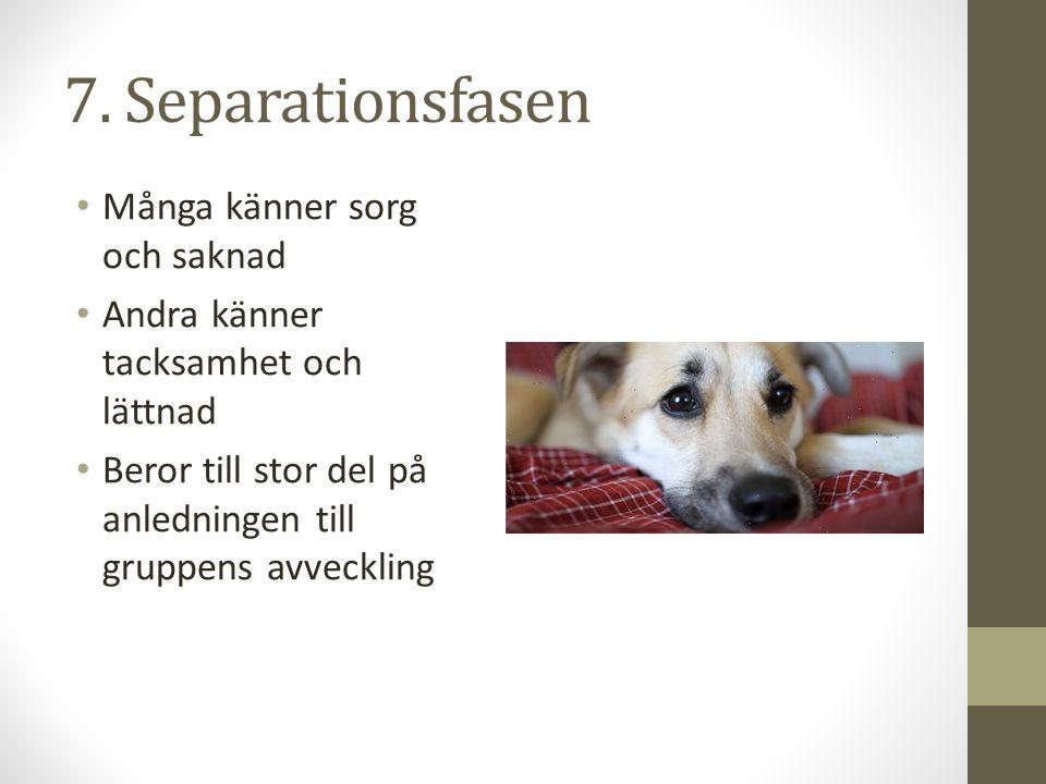 7. Separationsfasen Många känner sorg och saknad