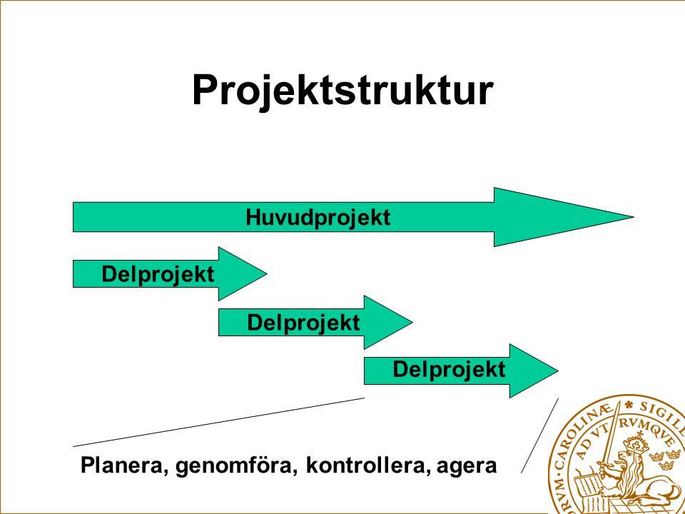 Projektstruktur Huvudprojekt Delprojekt Delprojekt Delprojekt