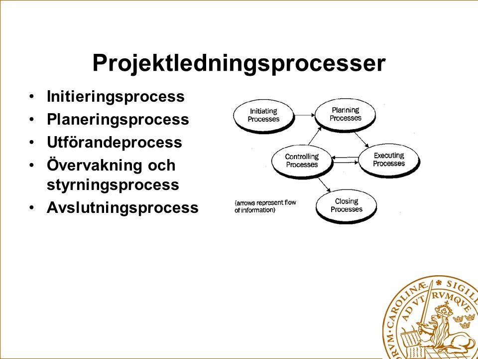 Projektledningsprocesser