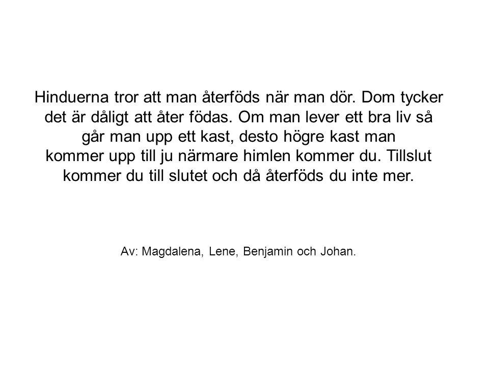 Av: Magdalena, Lene, Benjamin och Johan.