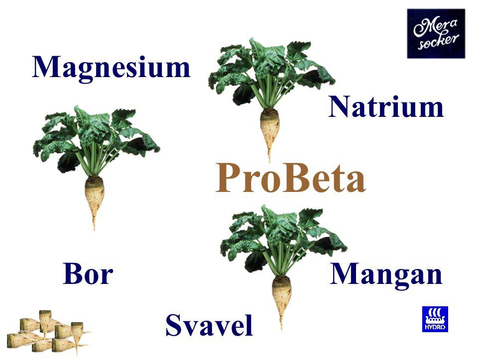 ProBeta Magnesium Natrium Bor Mangan Svavel