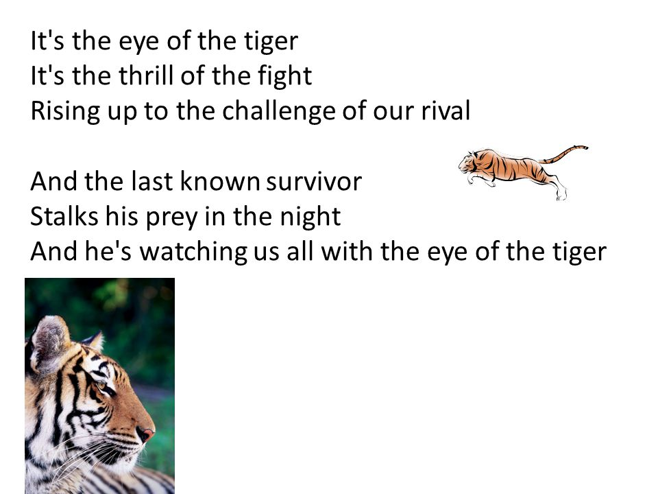 It s the eye of the tiger It s the thrill of the fight. Rising up to the challenge of our rival. And the last known survivor.