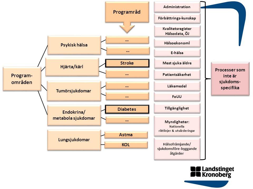 Programråd Program- områden