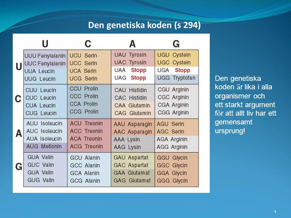 Den genetiska koden (s 294)
