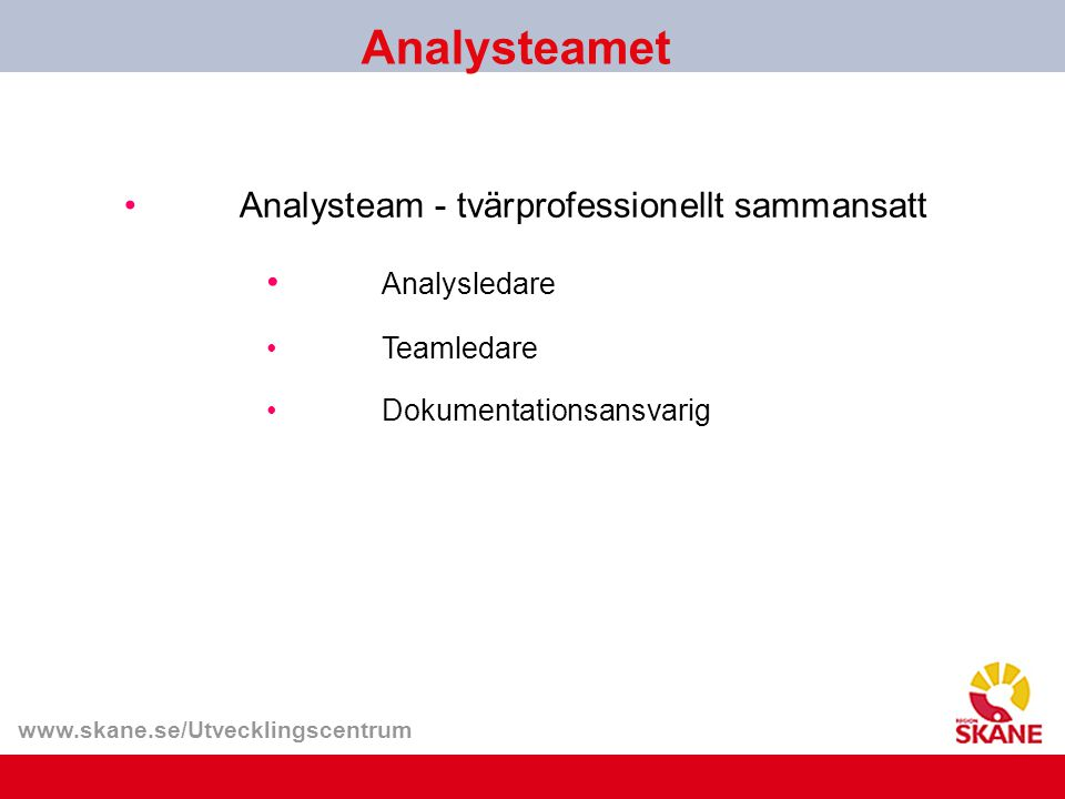 Analysteamet Analysteam - tvärprofessionellt sammansatt Analysledare