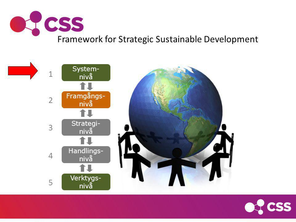 Framework for Strategic Sustainable Development