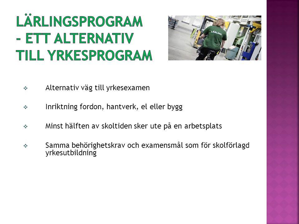Lärlingsprogram - ett alternativ till yrkesprogram