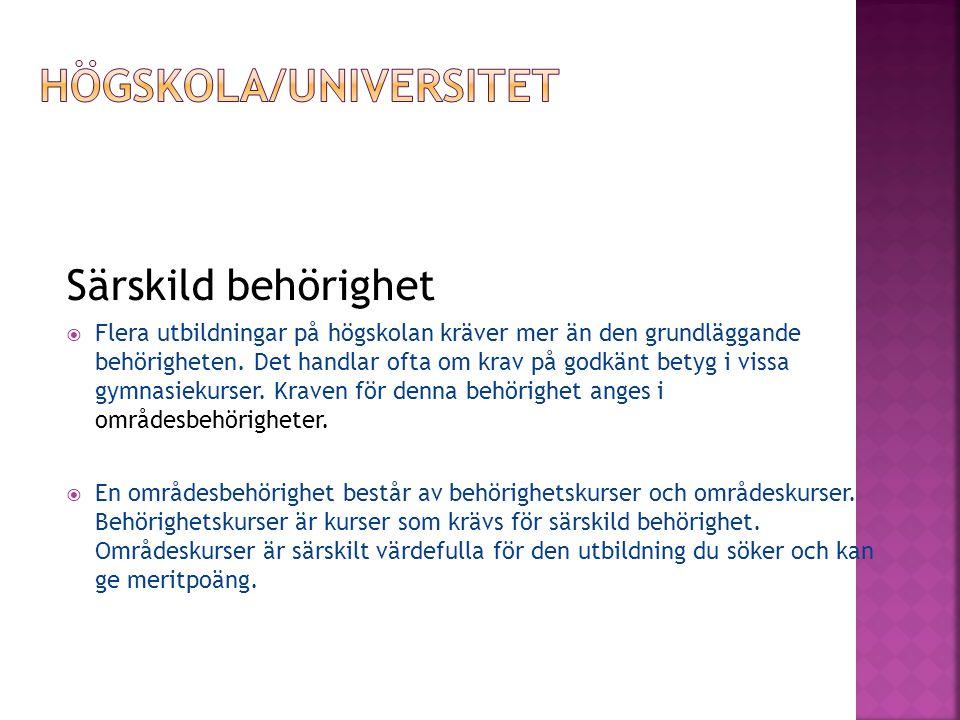 Högskola/Universitet