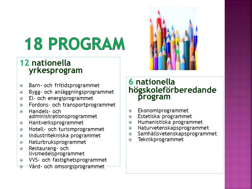 18 program 12 nationella yrkesprogram 6 nationella