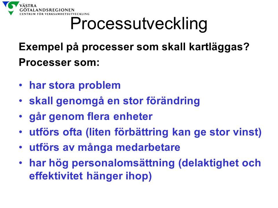 Processutveckling Exempel på processer som skall kartläggas