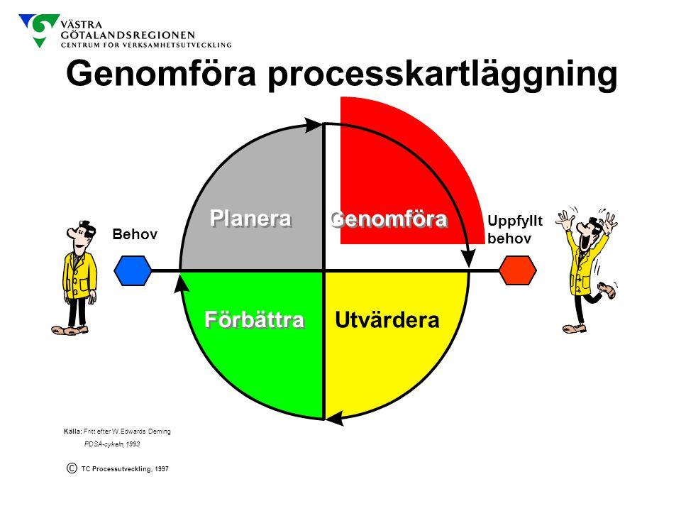 Genomföra processkartläggning