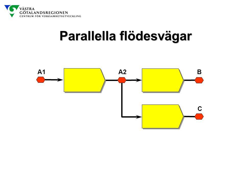 Parallella flödesvägar