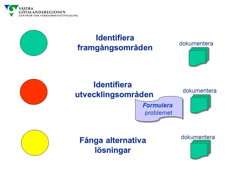 Identifiera framgångsområden Identifiera utvecklingsområden