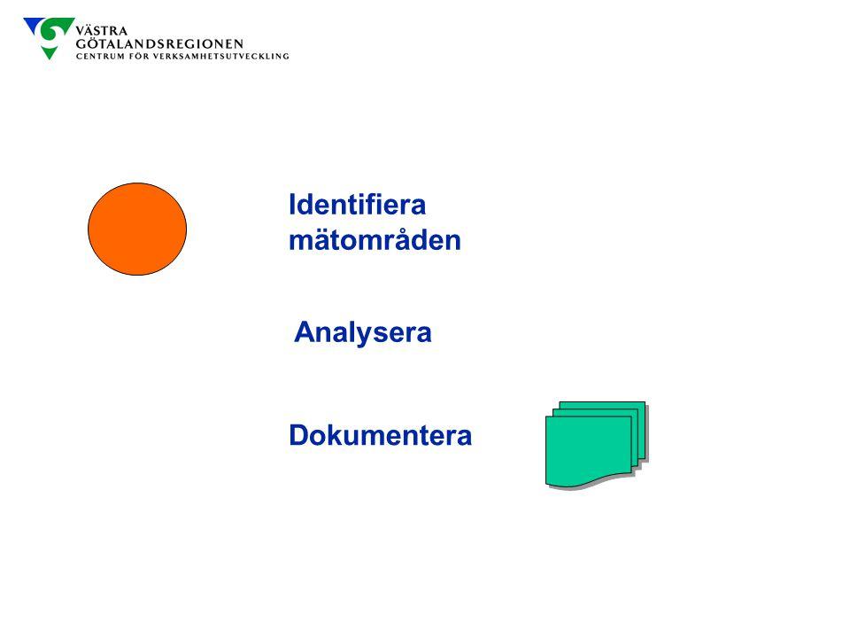 Identifiera mätområden Analysera Anteckningar Dokumentera