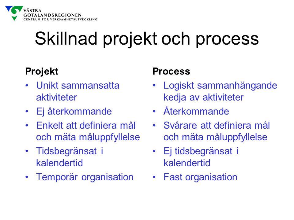 Skillnad projekt och process