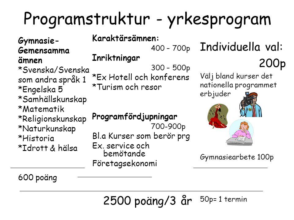 Programstruktur - yrkesprogram