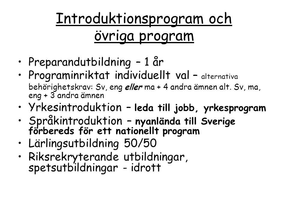 Introduktionsprogram och övriga program