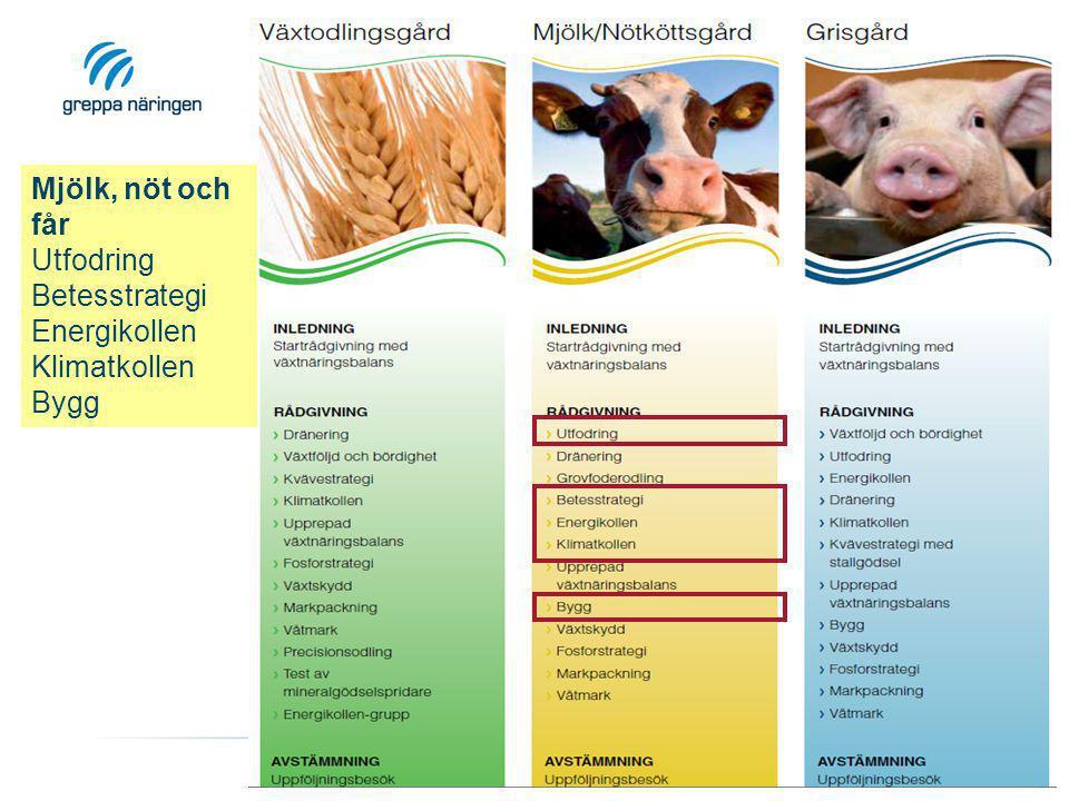 Mjölk, nöt och får Utfodring Betesstrategi Energikollen Klimatkollen