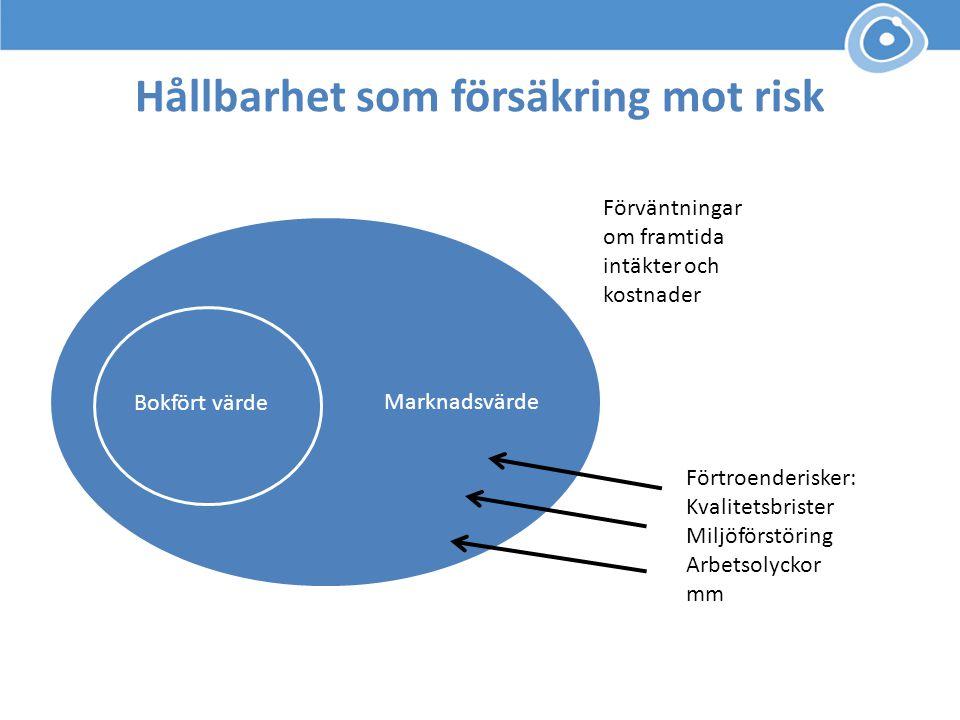Hållbarhet som försäkring mot risk