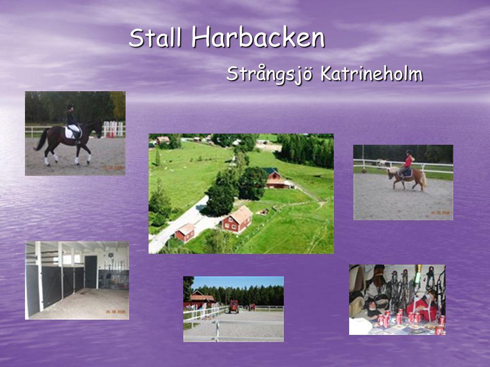 Stall Harbacken Strångsjö Katrineholm