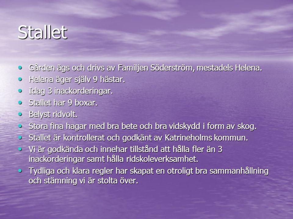 Stallet Gården ägs och drivs av Familjen Söderström, mestadels Helena.