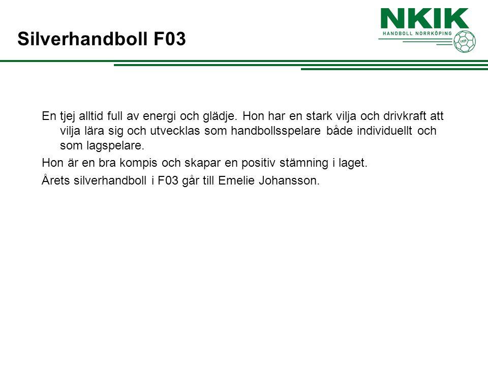 Silverhandboll F03