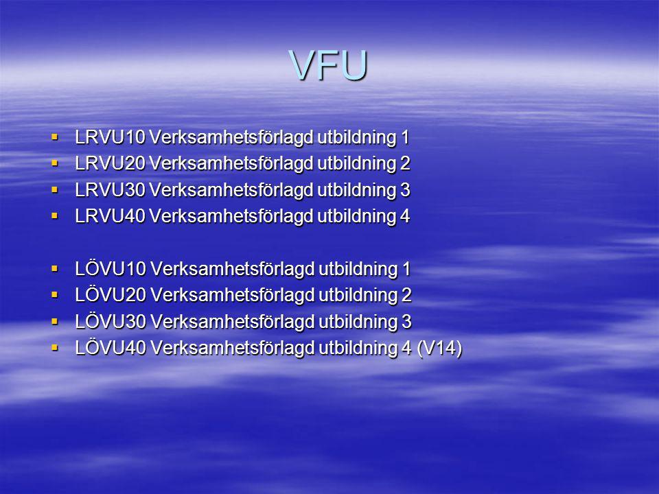 VFU LRVU10 Verksamhetsförlagd utbildning 1