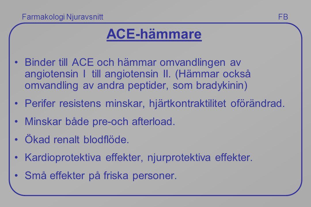 ACE-hämmare