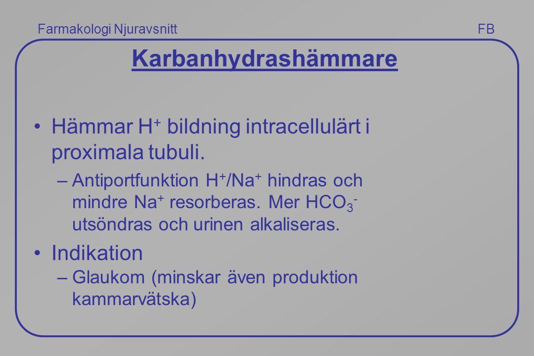 Karbanhydrashämmare Hämmar H+ bildning intracellulärt i proximala tubuli.
