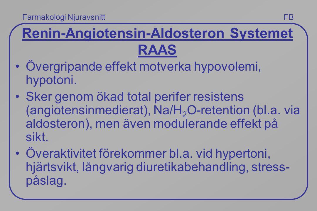 Renin-Angiotensin-Aldosteron Systemet RAAS