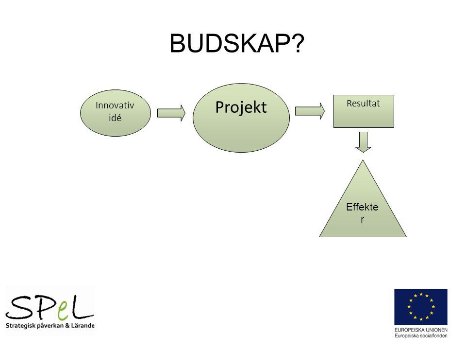 BUDSKAP Projekt Innovativ idé Resultat Effekter