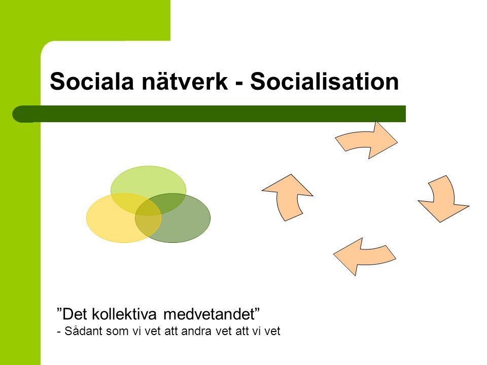 Sociala nätverk - Socialisation