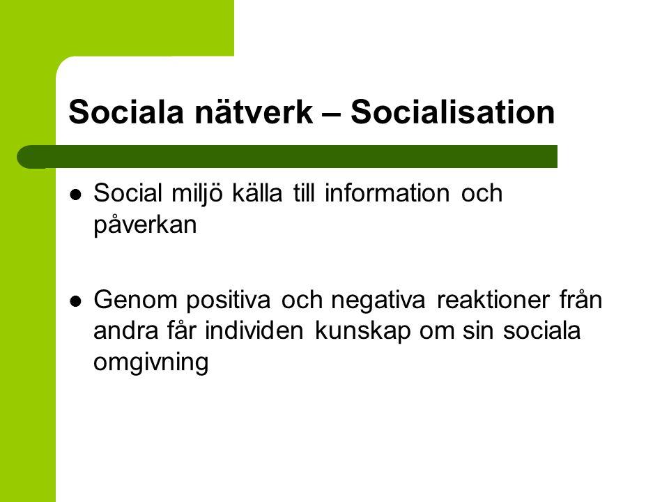 Sociala nätverk – Socialisation