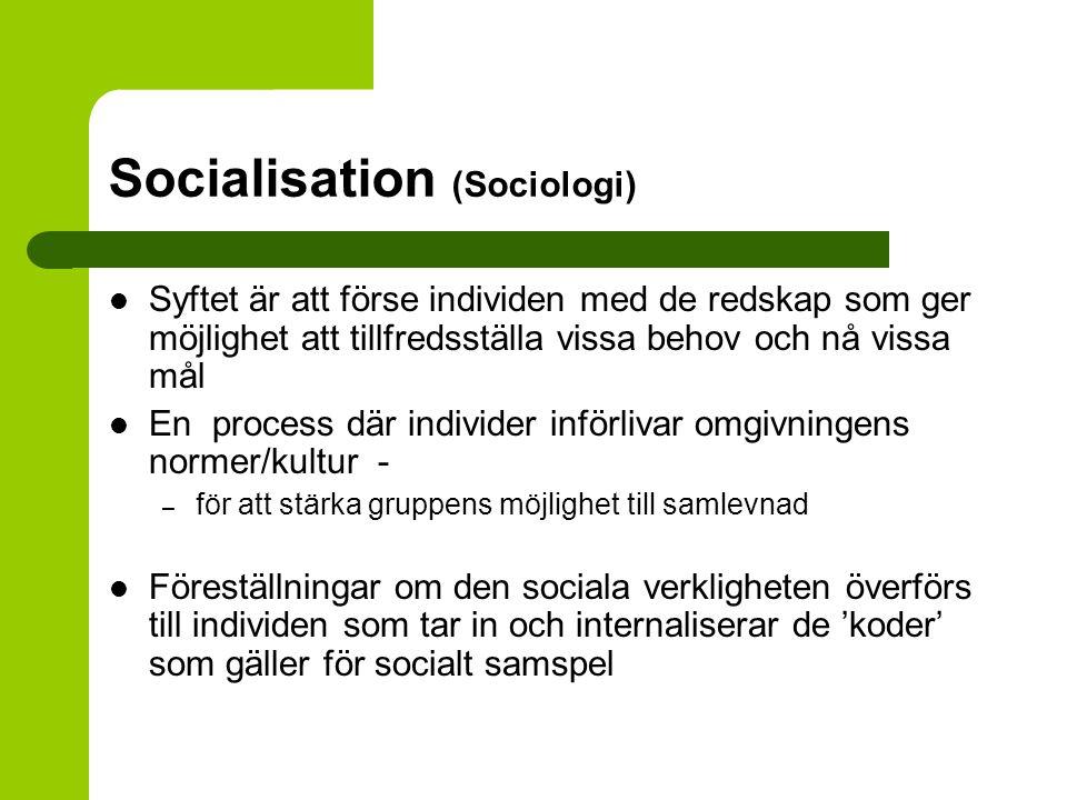 Socialisation (Sociologi)