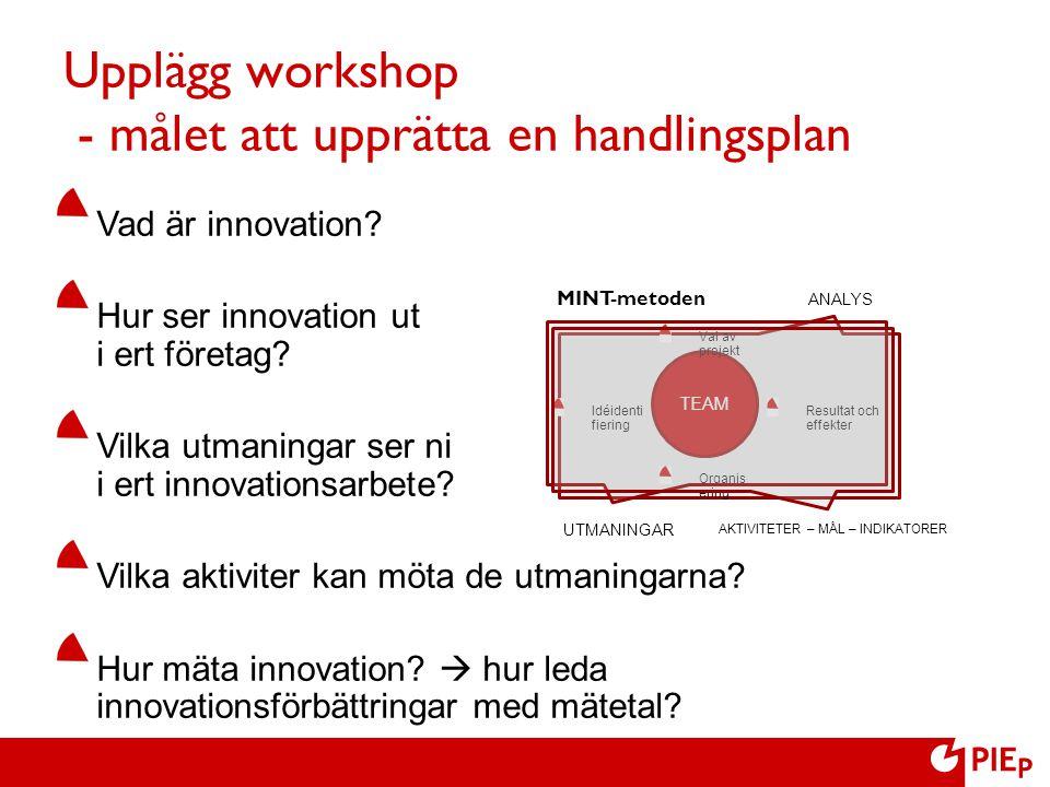 Upplägg workshop - målet att upprätta en handlingsplan