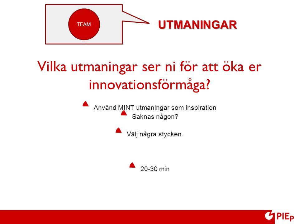 Vilka utmaningar ser ni för att öka er innovationsförmåga