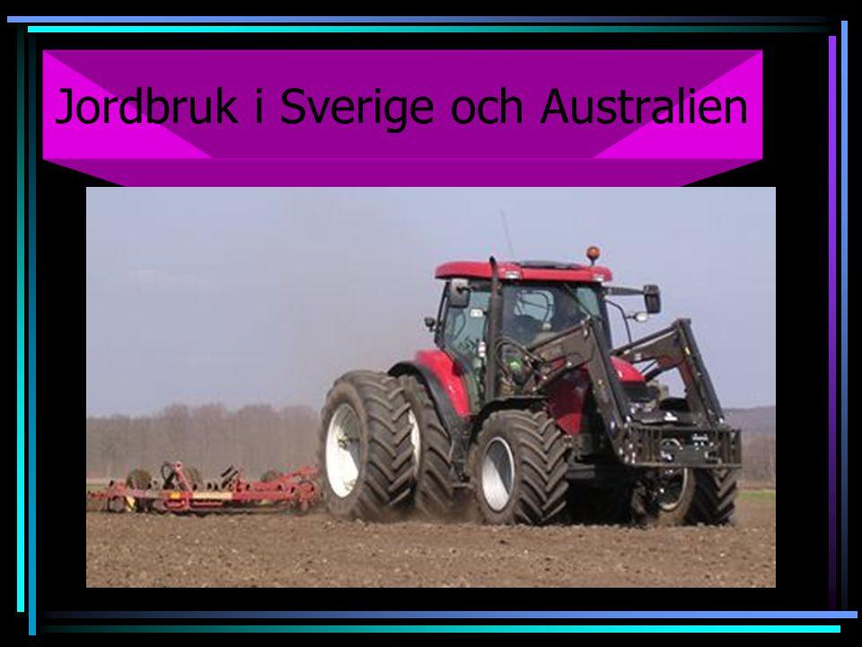 Jordbruk i Sverige och Australien