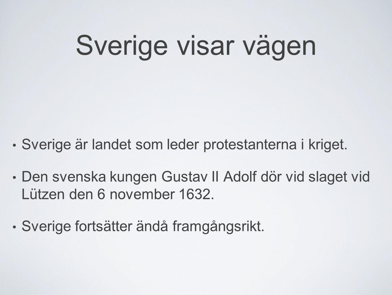 Sverige visar vägen Sverige är landet som leder protestanterna i kriget.
